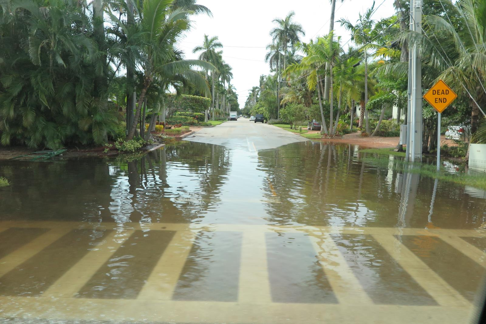 City of fort lauderdale fl floods and flood insurance las olas isles flooding geenschuldenfo Images