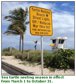 Sea Turtle Season sign