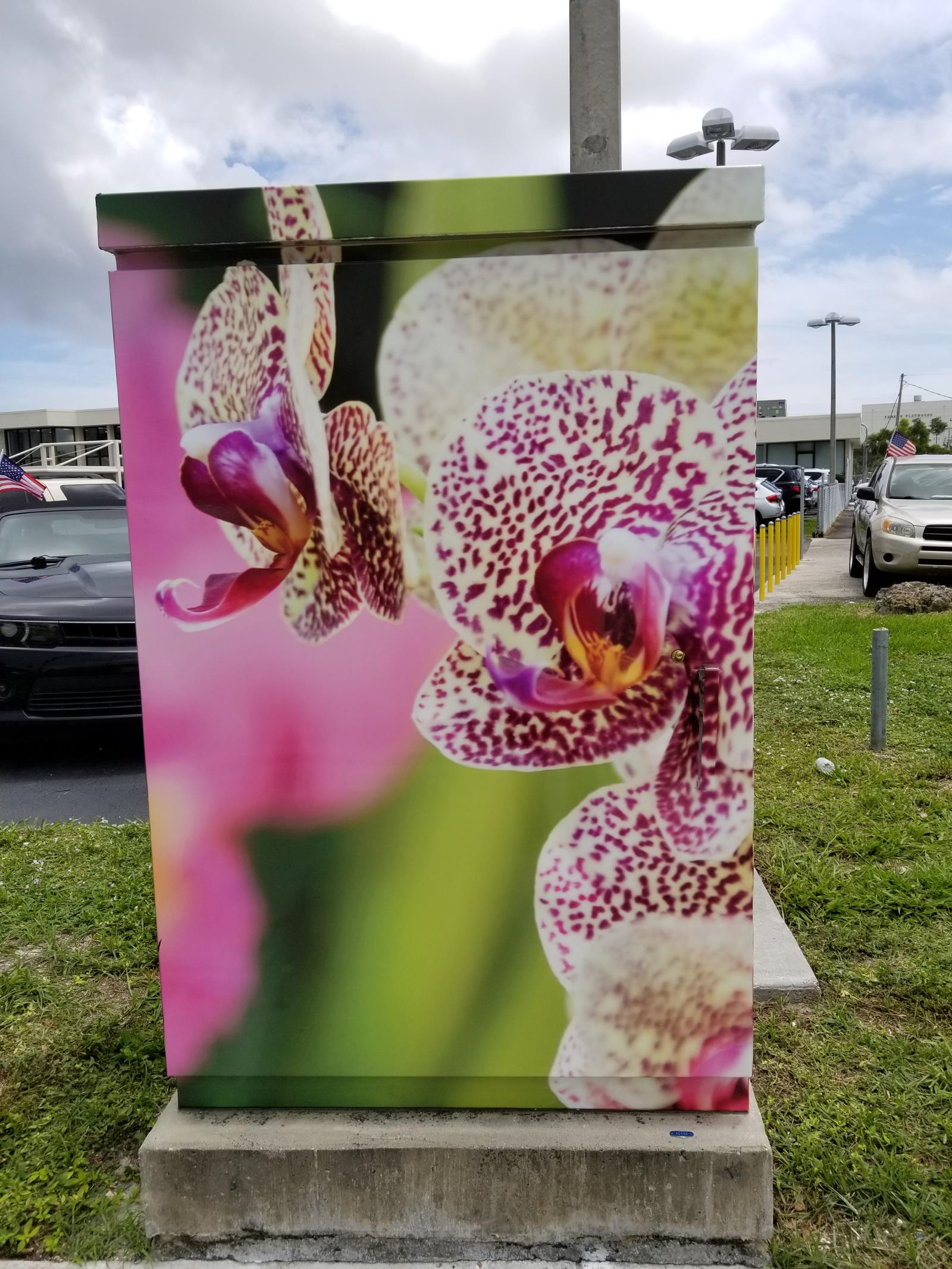 City Of Fort Lauderdale Fl Utility Box Wrap Program