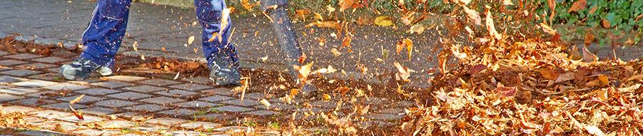 Leaf Blower Survey Landscape Service Professionals City Of Fort Lauderdale Fl