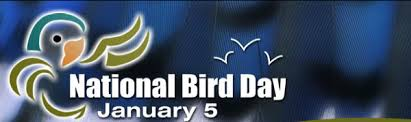 National Bird Day Logo