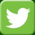 Twitter Icon PKR
