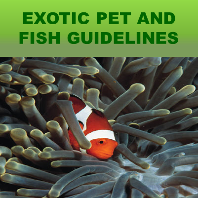 Exotic Pet and Fish Guidelines